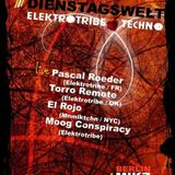 Torro Remote - SnapShot Elektrotribe October 2012 Promo Mix
