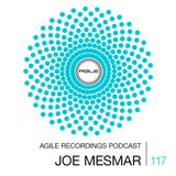 Agile Recordings Podcast 117 with Joe Mesmar