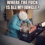 Dj Lp - So, where's your jungle?