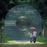 Avicii - Levels ( Dj Huy Vu Remix)