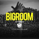 Tomorrowland 2017 Aftermix - Best Big Room House Mix