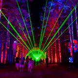 Nenesito Electric Forest Carnival Mix 2015