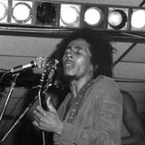 Bob Marley andthe Wailers Live, Chicago, IL June 10, 1975