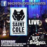 Secret Sub Rosa at Willowman Festival 2018 - Saint Cole Live