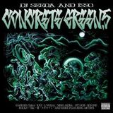DJ SEEDA AND ISSC  CONCERETE GREEN 5