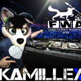 FWA Mix 2016