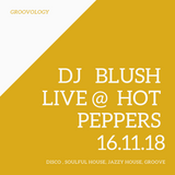 DJ Blush - Live @ Hot Peppers 16.11.2018 [Disco, Soulful House, Jazzy House, Groove]