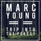 Trip Into The Forest - Marc Young
