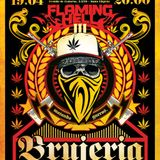 Flaming Hell III - BRUJERIA