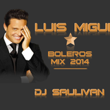 LUIS MIGUEL - BOLEROS MIX- DJ SAULIVAN