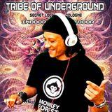 SonGoa - Tribe Of Underground