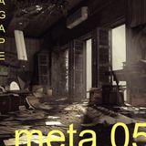 Meta 05