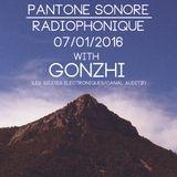 PANTONE SONORE RADIOPHONIQUE 1 with GONZHI - 07/01/2016