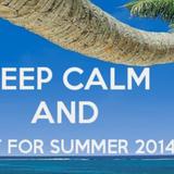A Forza di Essere Vento Inaugurazione - Wait for summer 2014
