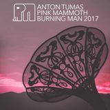 Anton Tumas - Pink Mammoth - Burning Man 2017