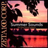 Summer Sounds Vol. 9