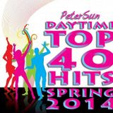 Daytime Top 40 Hits Spring 2014 by PeterSun