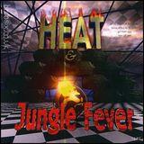 Dillinja w/ IC3, Funsta, Eksman, Riddla & Skibadee - Heat meets Fever - Ministry of Sound - 1.1.07