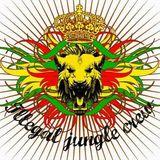 Ragga-Jungle Mix 9.5.2012