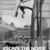 Dark Horse Radio Podcast 002 Jan 14