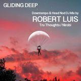 Gliding Deep Downtempo DJ Mix by Robert Luis