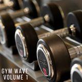 Gym Wave Volume 1 - Garage / House / Baseline & Grime