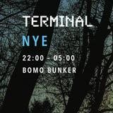 NYE Terminal mix 2017