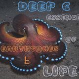 Deep C Presents Earthtones 5-Essence Of Life. Deep Traveling Emotional House Music!!!