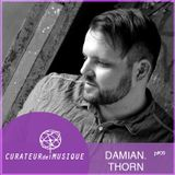 CURATEURdelMUSIQUE P#9_2013_DAMIAN THORN_re-upload