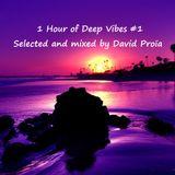 1Hour of deep vibes