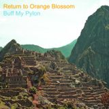 Return to Orange Blossom