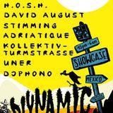 David August - Live @ Diynamic, BPM Festival, Blue Parrot, Playa del Carmen, México (09.01.2014)