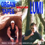 Organ Tapes w/ Lumi - 10th June 2019
