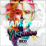 Zedd feat. Selena Gomez - I Want You To Know Vs DV & LM - Mamooth (YKNOW Mash)