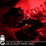 Gottwood Presents 024 - Mr Scruff Live From Gottwood Pt2