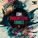 EDM Trance Mix Vol. II