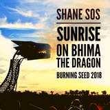 Sunrise on Bhima - Burning Seed 2018