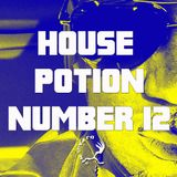House Potion Number 12