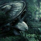 Plexigo - The Alien Jam [Dark Forest Psytrance / DJ-Set / Juli 2OI9]