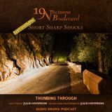 19 Nocturne Boulevard presents  - Thumbing Through