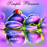 """""SIMPLE PLEASURE"""" chill & lounge compilation"