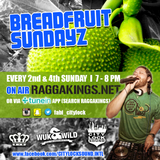 City Lock's Breadfruit Sundayz hosted by Fabi Benz 2016-01-31