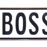 Ένα yes boss ακόμα, μ' ακούυυυυυυυυς