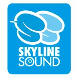 Dancehall Classic SKYLINE SOUND Mix Mixed By YG