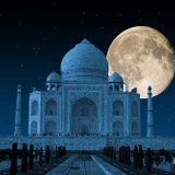 Stranger in the Night - Taj Mahal