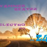 Wammez Beatzz Electro mix Volume 24
