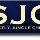 JJ Jellybean, RP Smack, Snuggles, MC Gene, Justin Tewn live on Strictly Jungle Chicago 3/31/1995