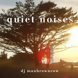Quiet Noises