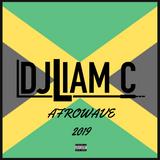 @DJLiamC // Afrowave 2019