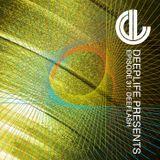 Deeplife Presents Episode 031 - 11.2.2016 - Guest Mix Deeflash